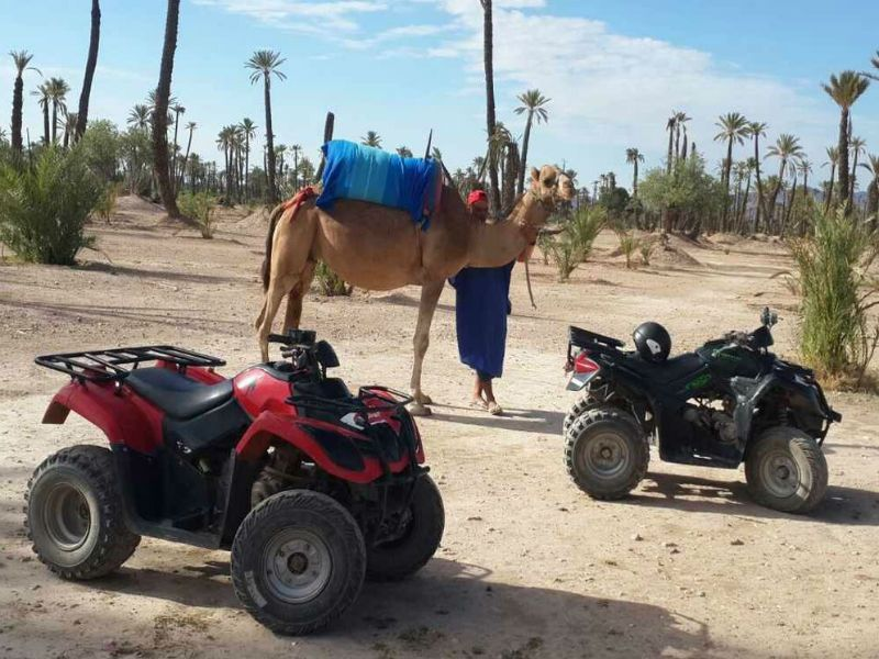 http://www.mogador-travel.com/wp-content/uploads/2018/11/quad-and-camel-ride-combined.jpg
